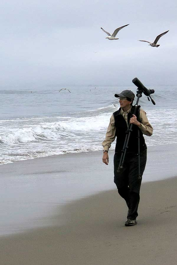 Anne Maczulak on the beach with her bird watching scope